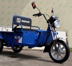 Грузовой электротрицикл Electrowin Cargo 1