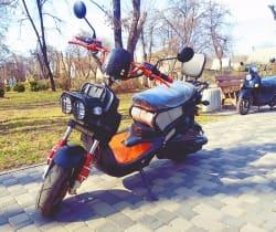 Electrowin ZUMA в киевском весеннем парке